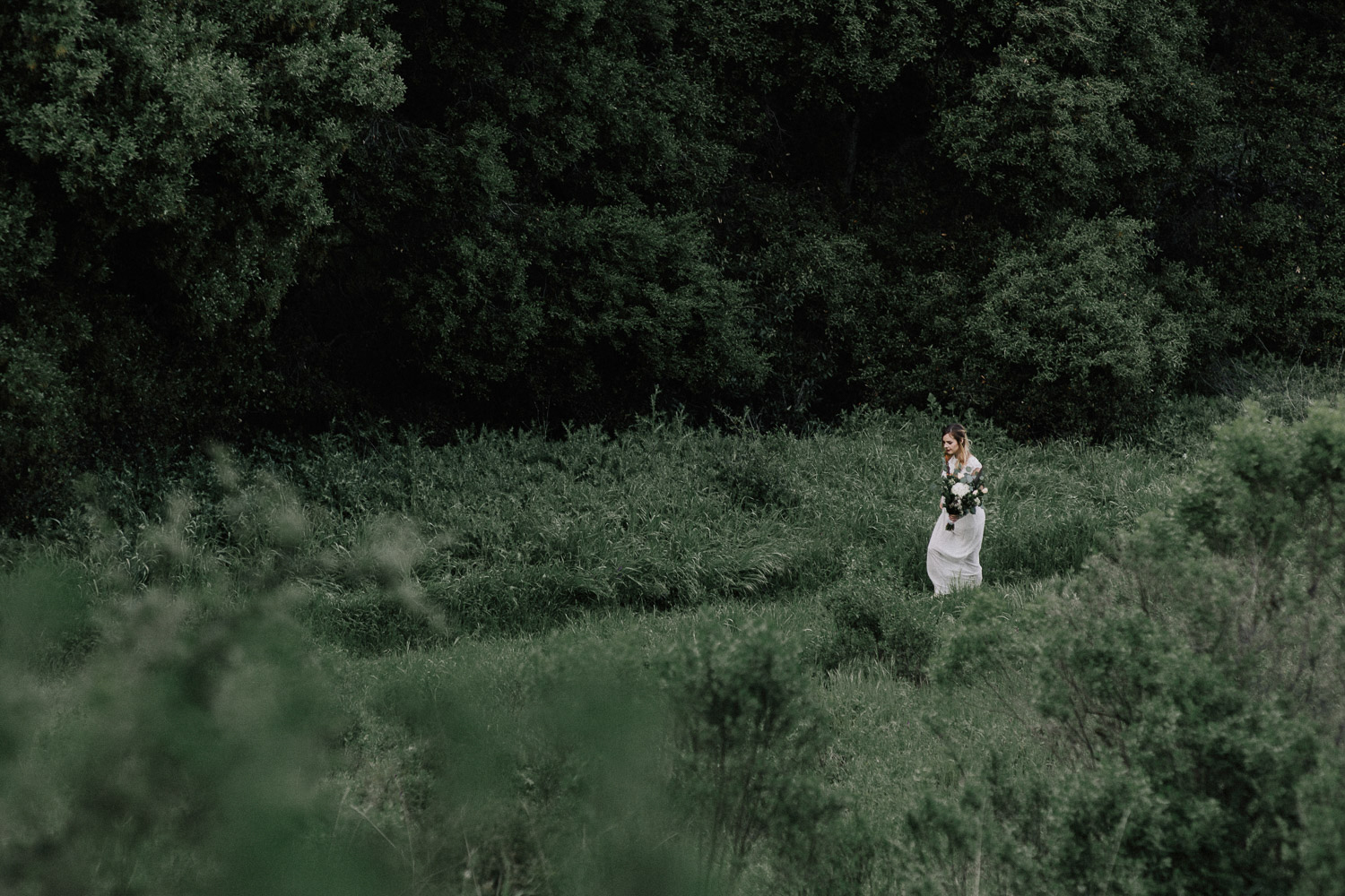 Image of bride walks in the trees